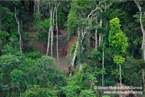© Gleison Miranda/FUNAI/Survival. www.uncontactedtribes.org