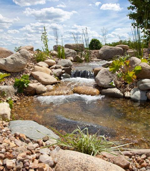 l essentiel du d veloppement durable natur o le premier bassin de baignade. Black Bedroom Furniture Sets. Home Design Ideas