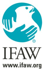 IFAW (Fonds international pour la protection des animaux)