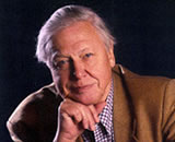 Sir David Attenborough, Patron de World Land Trust