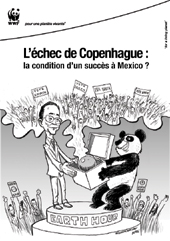 L'Échec de Copenhague, la condition d'un succès à Mexico ?