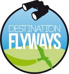 Destination Flyways