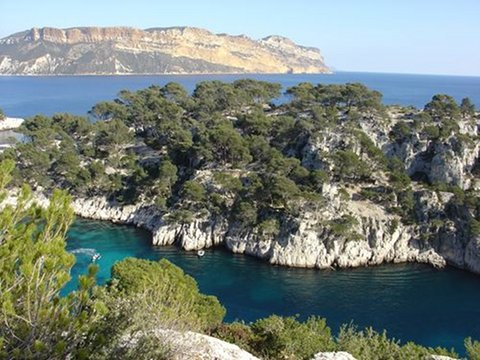 Presquile cap canaille © GIP Calanques